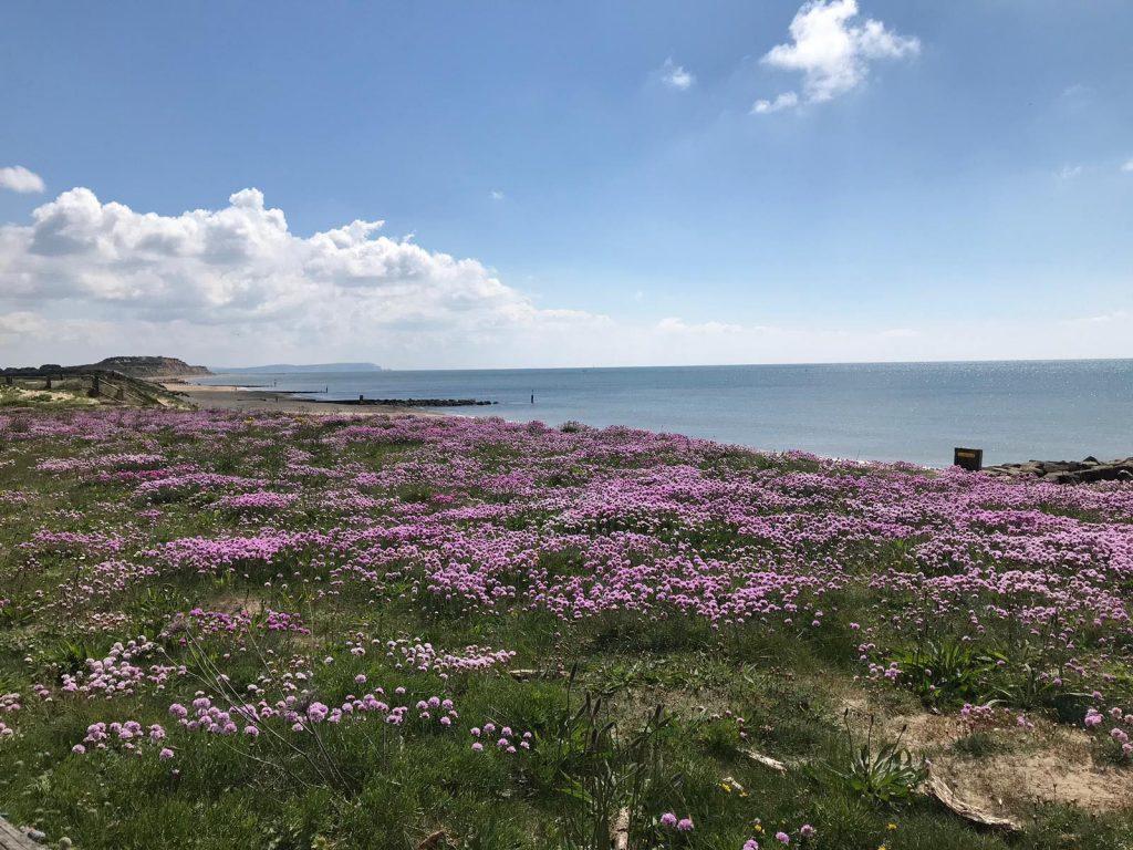 Hengistbury Head, Bournemouth, Dorset